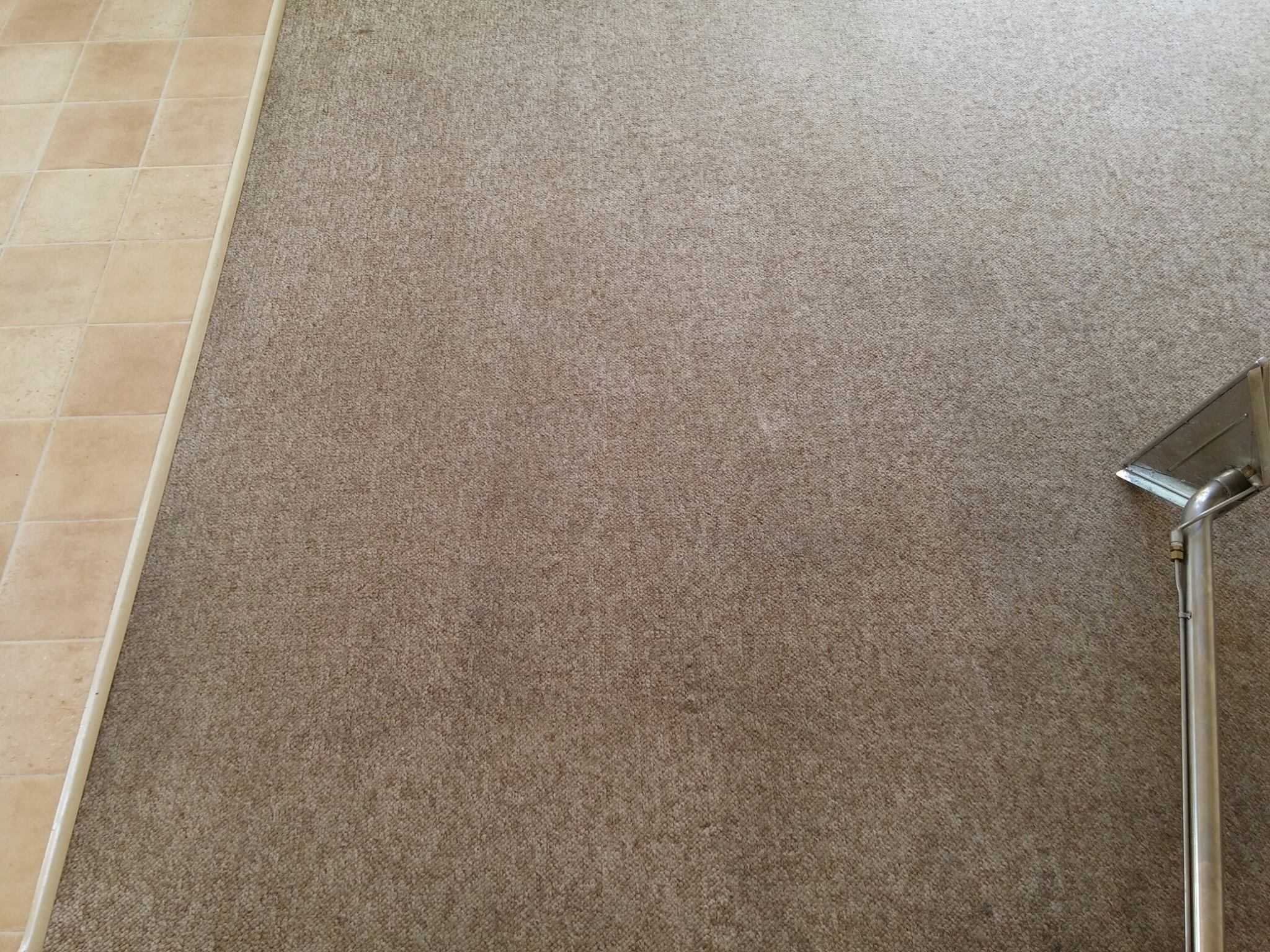 End of lease cleaning perth carpet steam cleaning perth ckf cleaning services provides more than just steam cleaning for your carpet ckfs carpet steam cleaning perth include the following full package to make dailygadgetfo Choice Image